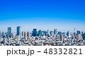 東京 都市風景 東京タワーの写真 48332821