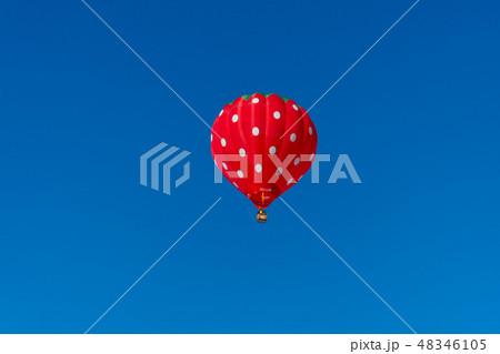 快晴の青空と小千谷風船一揆の気球 48346105