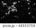 あき 秋 落下の写真 48353759