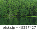 御射鹿池 池 蓼科高原の写真 48357427