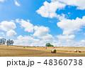 畑 北海道 夏の写真 48360738