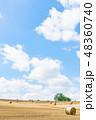 畑 北海道 夏の写真 48360740