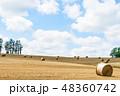 畑 北海道 夏の写真 48360742