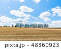 北海道 夏 丘の写真 48360923
