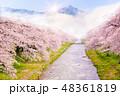 花 桜 サクラの写真 48361819