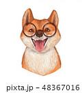 わんこ 犬 かわいいのイラスト 48367016