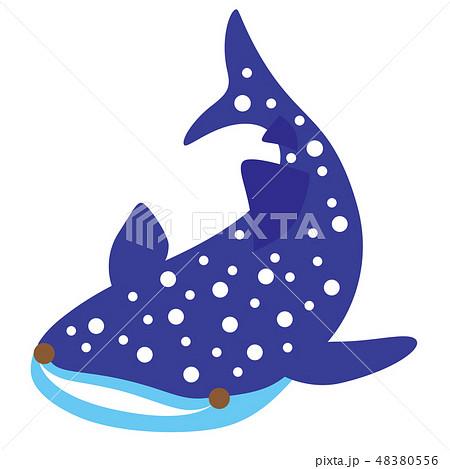 ジンベイザメのイラスト素材 48380556 Pixta