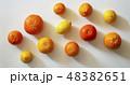 柑橘類 48382651
