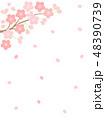 桜 桜花 花のイラスト 48390739