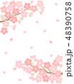 桜 桜花 花のイラスト 48390758
