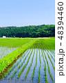 日本 農業 空の写真 48394460
