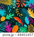 ジャングル 密林 葉のイラスト 48401457