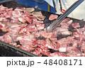 食べ物 肉 料理の写真 48408171