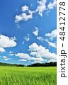 空 雲 綺麗の写真 48412778