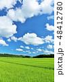 青空 晴れ 空の写真 48412780