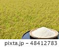 秋 田んぼ 米の写真 48412783