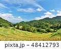 空 稲 米の写真 48412793