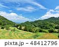空 稲 米の写真 48412796