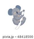 コアラ ベクトル キャラクターのイラスト 48418500