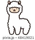 動物 哺乳類 キャラクターのイラスト 48419021