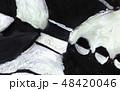 texture 48420046
