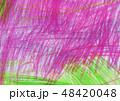 texture 48420048