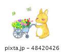 花ワゴン 48420426