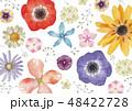 春の花 夏の花 背景 テキスタイル 水彩 48422728