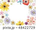 春の花 夏の花 背景 フレーム 水彩 48422729