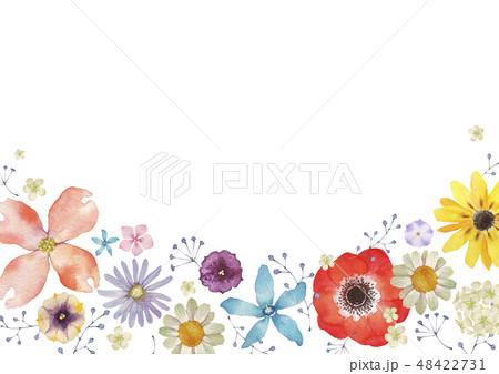 春の花 夏の花 背景 フレーム 水彩 イラスト 48422731