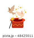 サーカス ベクトル 鳩のイラスト 48425011