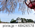名古屋城 城 春の写真 48426578