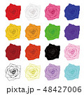 色々な薔薇のイラスト 48427006