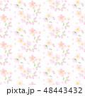 桜の花シームレスパターン 48443432