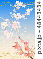 桃桜梅和風 48443434