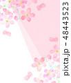 桜 フレーム 桜模様のイラスト 48443523