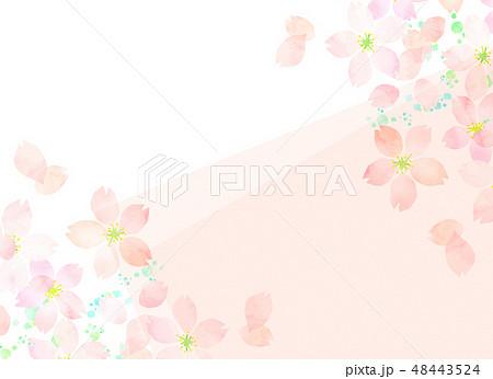 桜 水彩風 テクスチャー 48443524