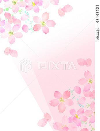 桜 水彩風 テクスチャー 48443525