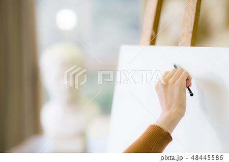 美術アトリエ 石膏デッサン 48445586