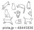 猫のイラストセット 48445836