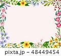 花 背景 ピンクのイラスト 48449454