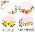 花 背景 ピンクのイラスト 48449455