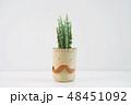 さぼてん サボテン 仙人掌の写真 48451092