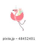 鳥 フラミンゴ キャラクターのイラスト 48452401