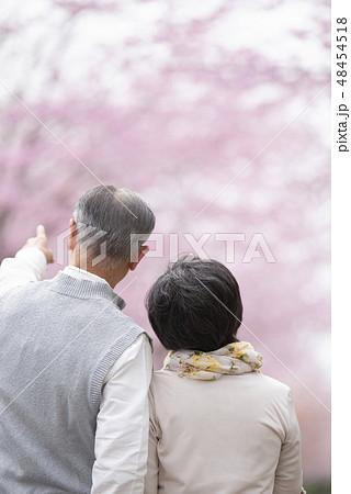 桜の前で指を差すシニア夫婦の後ろ姿 48454518