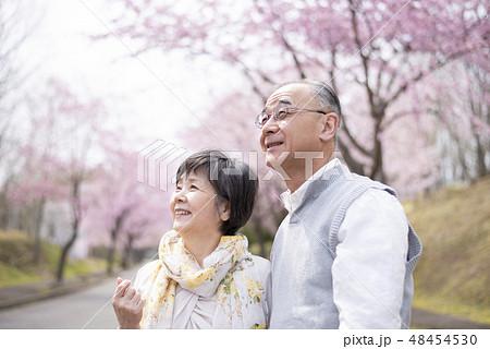 桜を見つめるシニア夫婦 48454530