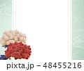 牡丹 フレーム 枠のイラスト 48455216