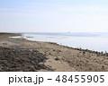 竹富島 砂浜 ビーチの写真 48455905