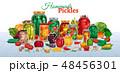 食 料理 食べ物のイラスト 48456301