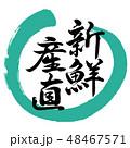 新鮮産直 筆文字 書道のイラスト 48467571
